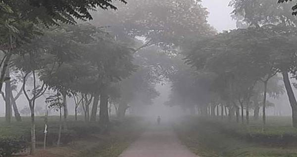 দেশের সর্বনিম্ন তাপমাত্রা শ্রীমঙ্গলে ৬ ডিগ্রি