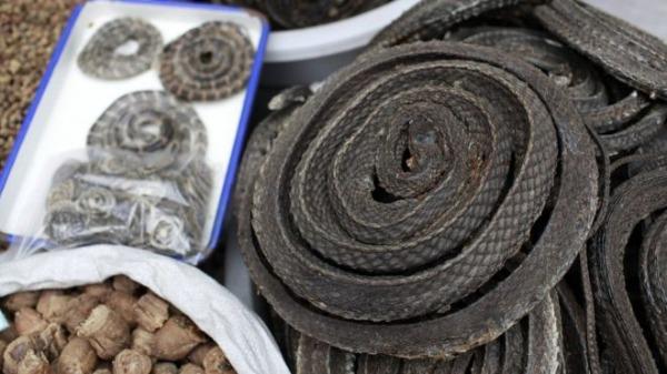 সামুদ্রিক খাবারের বাজার থেকেই করোনাভাইরাসের প্রাদুর্ভাব