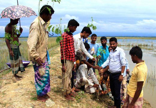 """জৈন্তাপুরের সেটারী সেনগ্রামে ৫শ""""একর বোরো ভূমি বেড়ী বাধেঁ বৃক্ষ রোপন"""