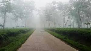 দেশের সর্বনিম্ন তাপমাত্রা শ্রীমঙ্গলে ৫ দশমিক ৫ ডিগ্রি সেলসিয়াস