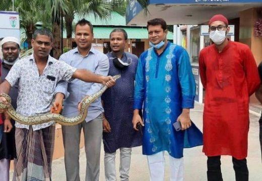 শ্রীমঙ্গল থানায় অজগর সাপ হস্তান্তর করল ছাত্রলীগ